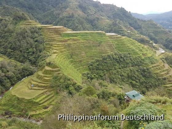 Touren zu den Reisterrassen